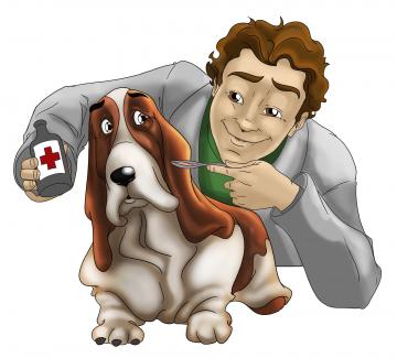 veterinary-1529191_1920